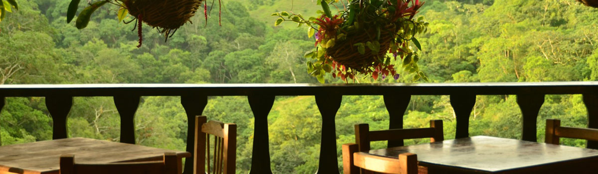Visit Botanical Gardens Puerto Vallarta